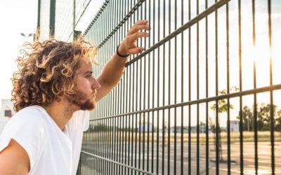 Quelle hauteur maximale pour une clôture professionnelle?